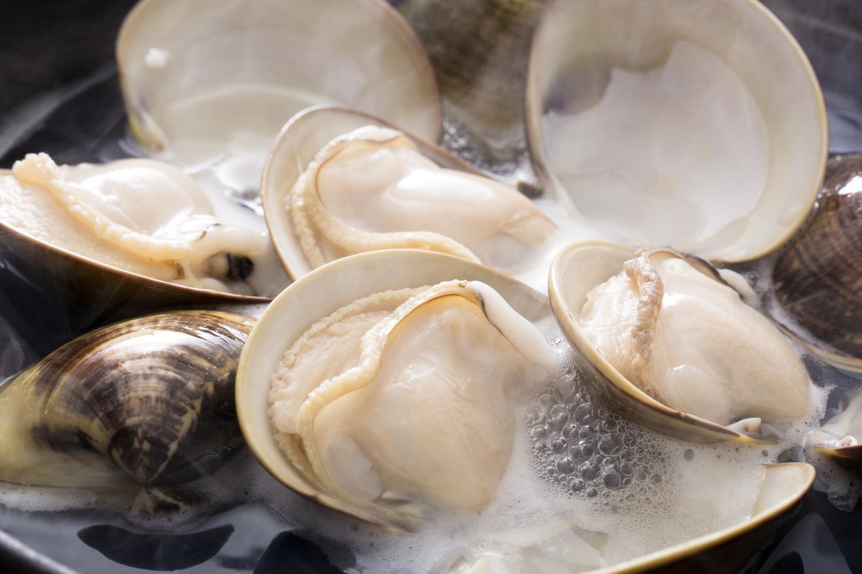 貝類の特徴と種類に関して 食材仕入先探し 飲食店.COM